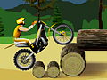 Stunt Dirt Bike играй в флеш игры бесплатно онлайн на flash.com.ru